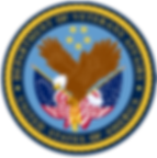 department of VA logo trasparent.png