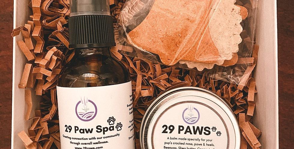 29 Paws Set