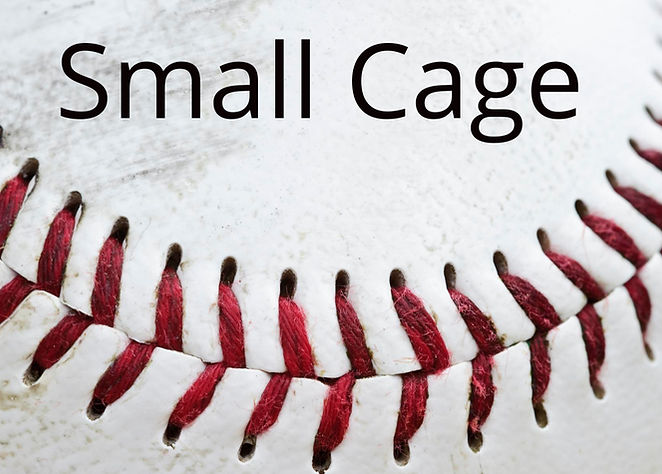 Small Cages.jpeg