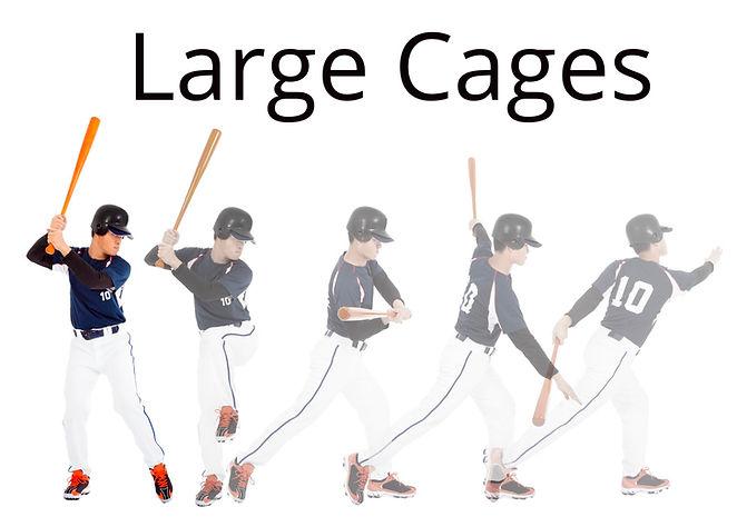 Elev8 Large Cages.jpeg