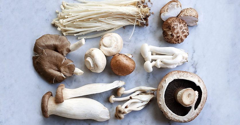 mushrooms-varieties-types-1200x628-faceb