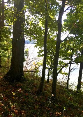Owasco Bluffs Nature Preserve