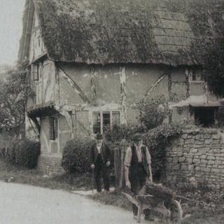 Manor Lane Fern Dairy (2).JPG