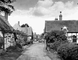Manor Lane Frith.jpg