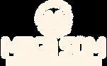 mega-som-logo.png