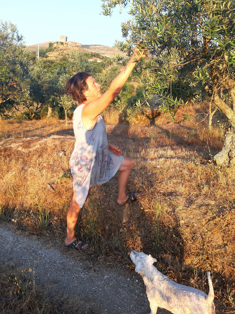 Living on a farm in Portugal. Following your heart and fulfilling your dreams