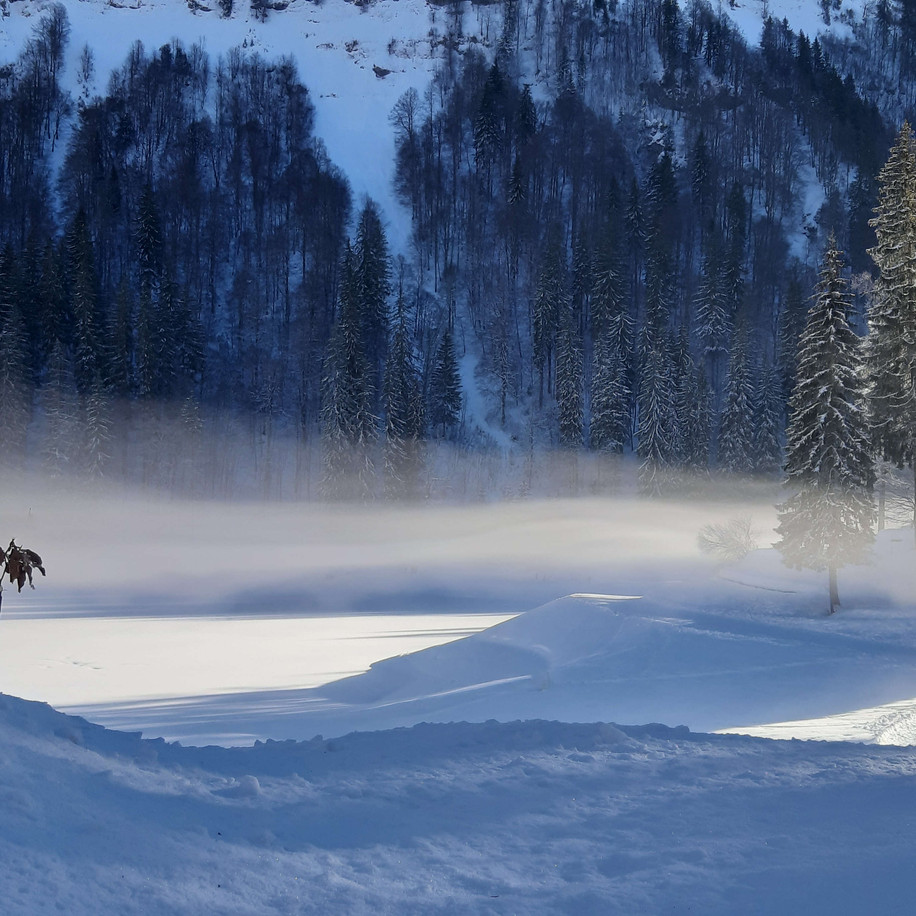 Mountain Mist, Morzine, French Alps