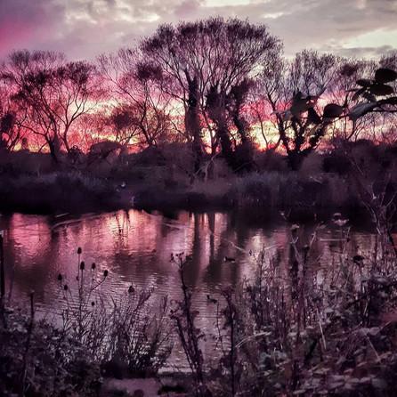 Purple Sunsets, Hampshire, UK