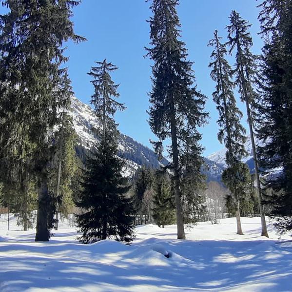 Klosters, Swiss Alps