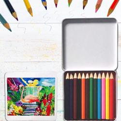Flamingo Coloured Pencils