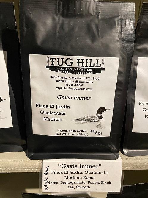 Tug Hill Gavia Immer Coffee