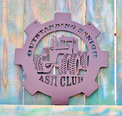 Outstanding senior asm club.jpg