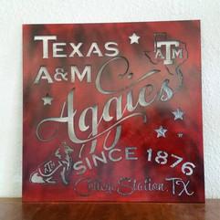 Texas A&M aggies since 1876.jpg