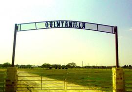 Quintanilla.jpg