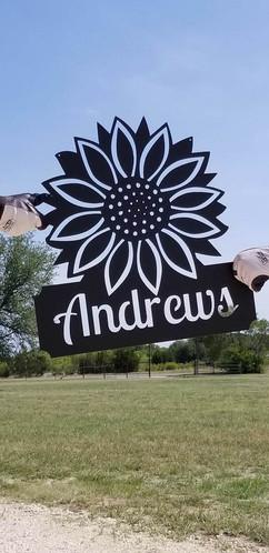Andrews Sunflower.jpg