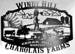 WIndy Hill Charolais Farms.jpg