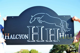 Halcyon Hill.jpg