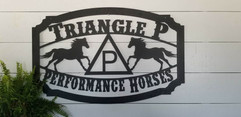 Triangle P preformance horses.jpg