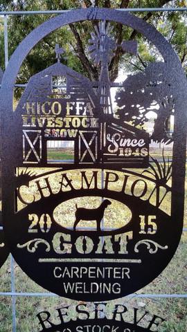 Hico FFA Champion goat.jpg