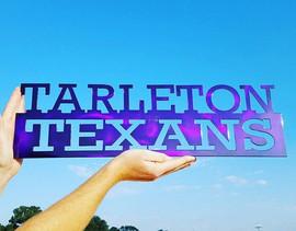 tarleton texans.jpg