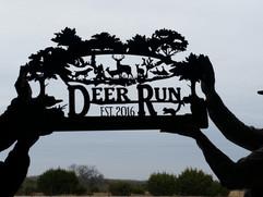 deer run.jpg