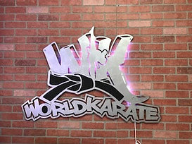 Wk world karate.jpg