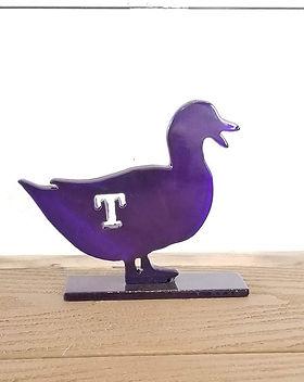 tarleton duck with feet.jpg