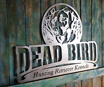 Dead bird hunting retriever kennels.jpg