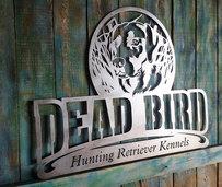 Dead bird hunting retriever kennels.jpg