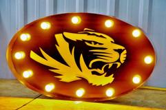 Tiger light up.jpg
