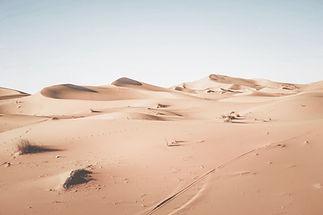 Desert%20Landscape_edited.jpg