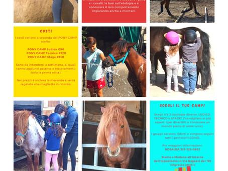 Arriva il Pony Camp! Centri estivi 2021