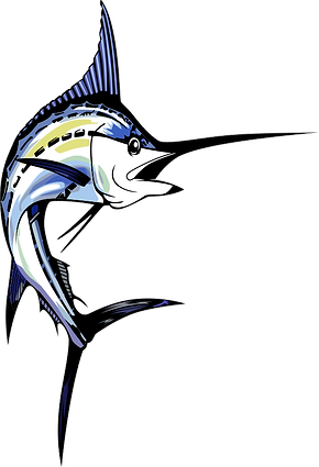 at color fish favicon.png