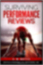 Surviving Performance Reviews Adam Matti