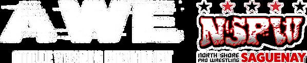logo awe nspw.png