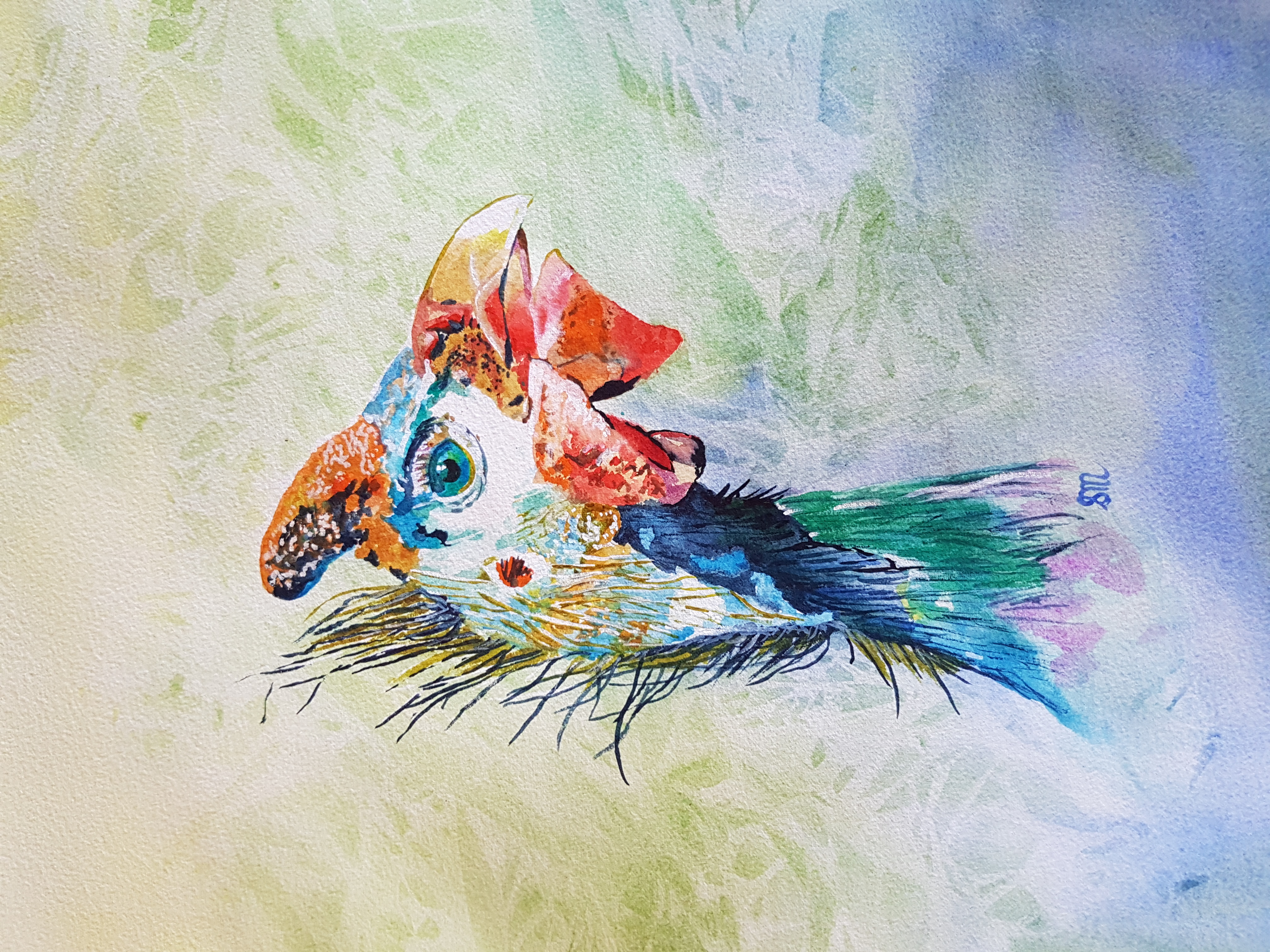 Steve Guinea Fowl-Watercolour