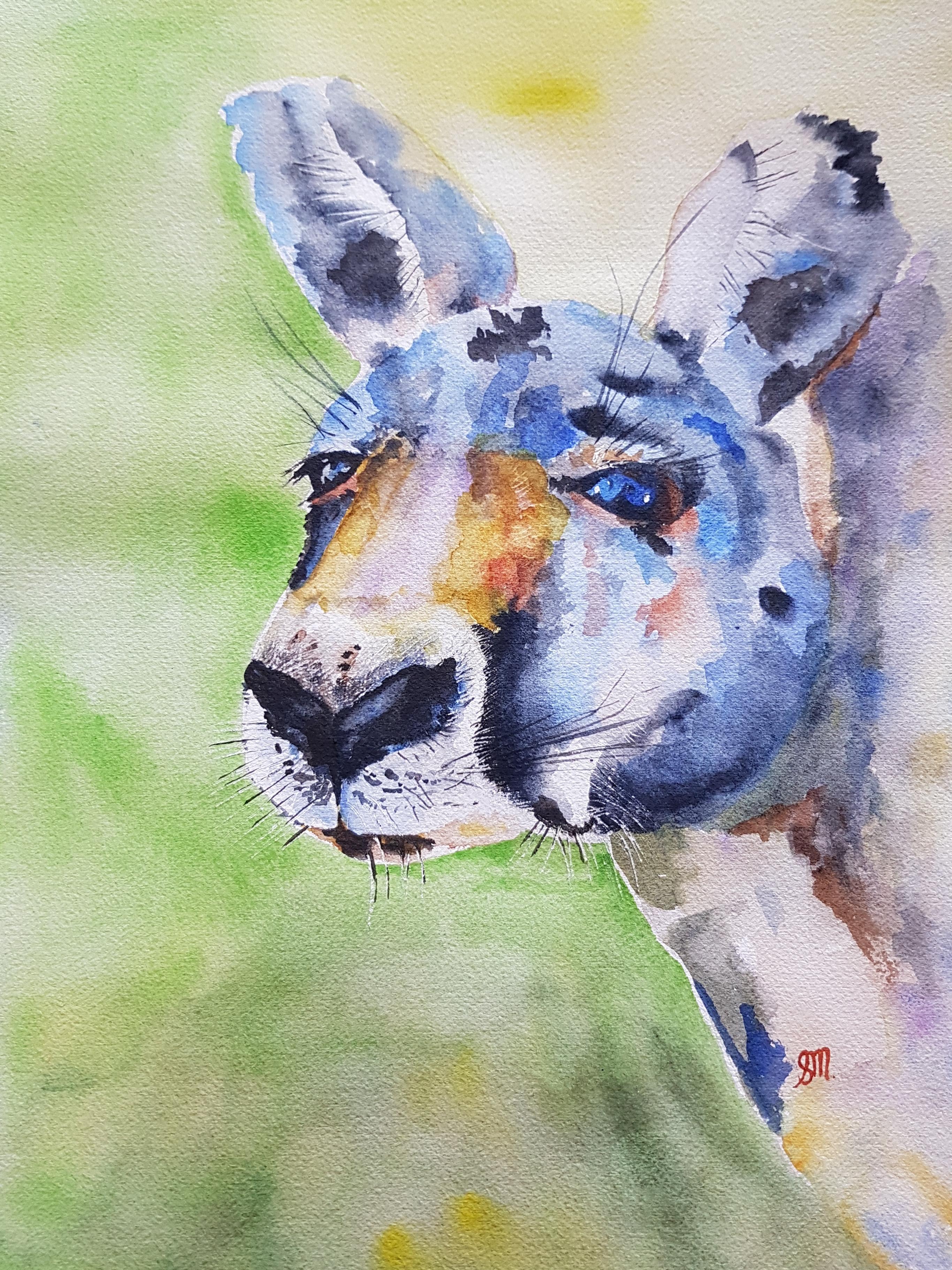 Red Kangaroo-Watercolour