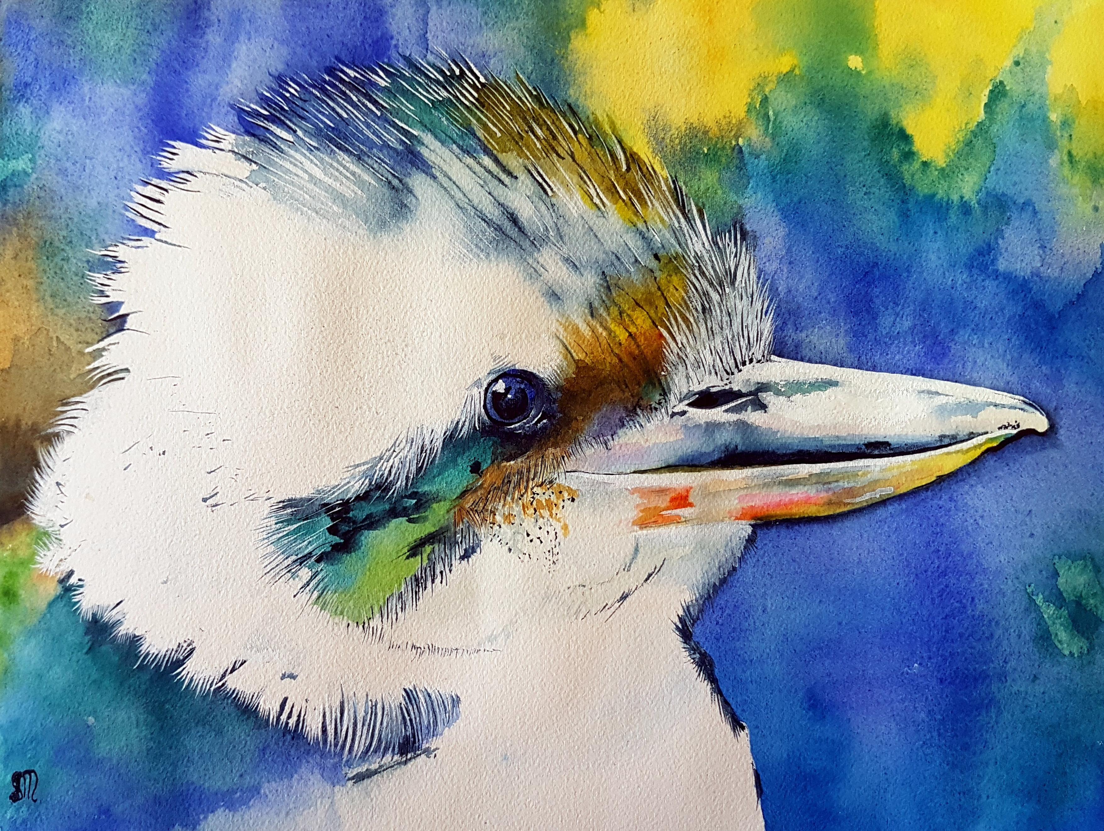 Kipper Kookaburra