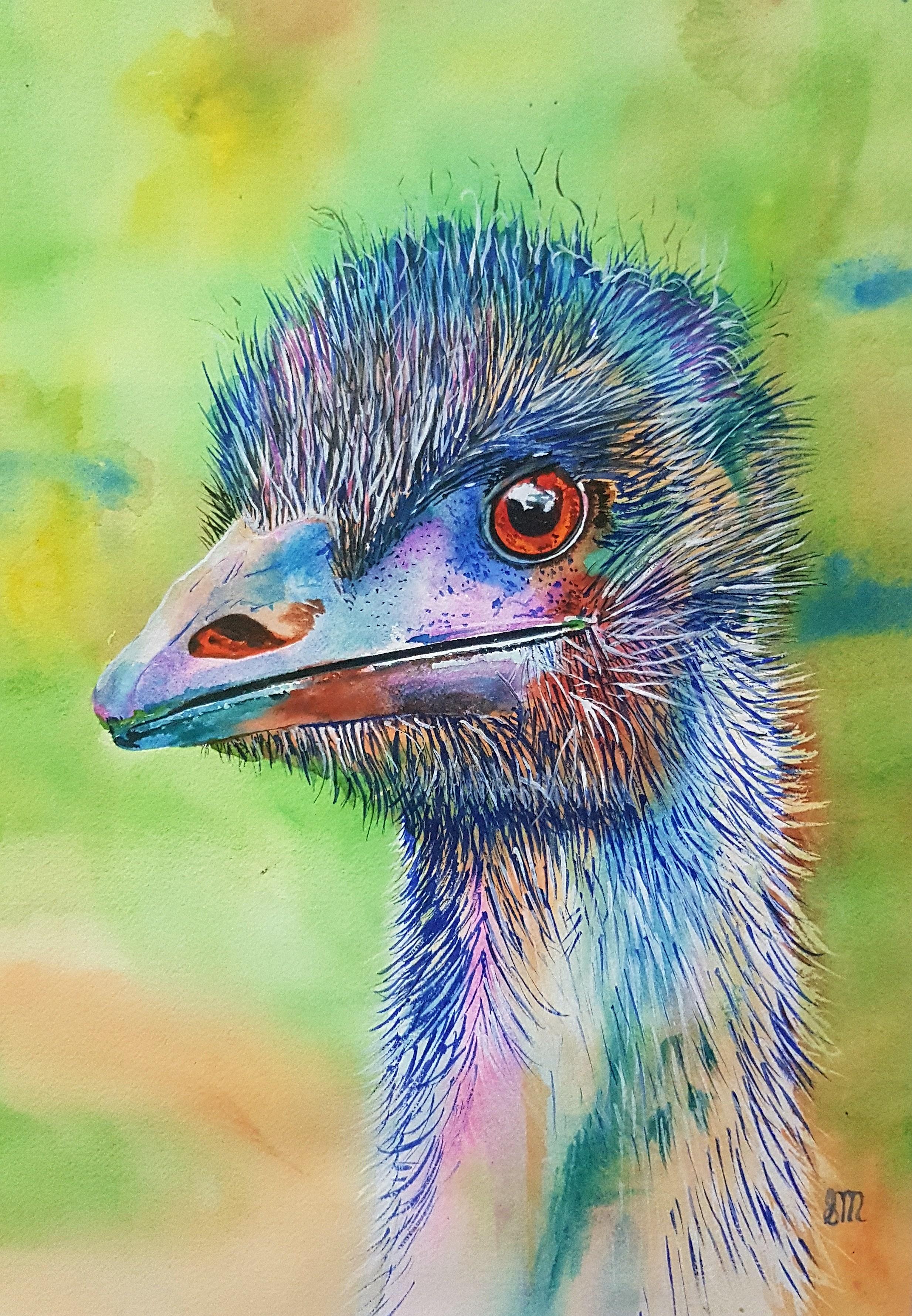 Elliott Emu