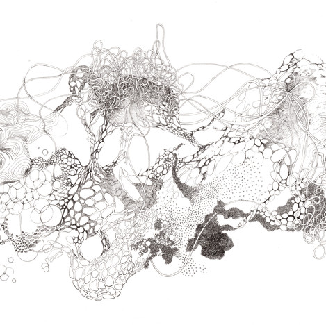 Rencontre entre art et science