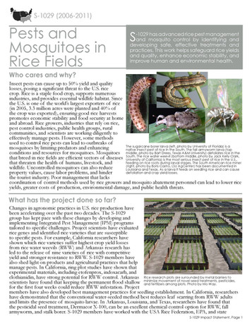 Pests & Mosquitoes in Rice Fields (S-1029 | 2006-2011)