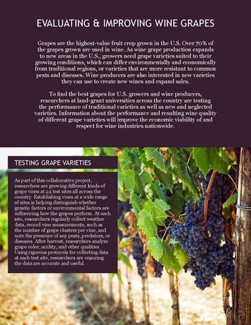 Improving Wine Grapes (NE-1020 | 2012-2017)