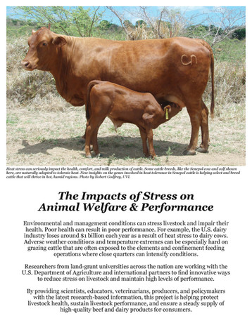 The Impacts of Stress on Animal Welfare & Performance (W-2173 | 2011-2016)