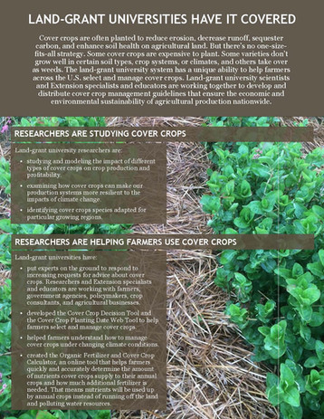 Cover Crop Research