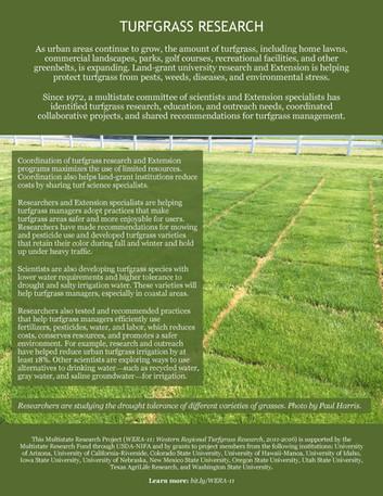 Turfgrass Research (WERA-11 | 2011-2016)