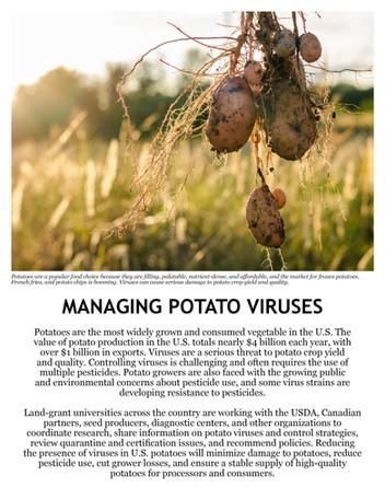 Managing Potato Viruses (WERA-89 | 2011-2016)
