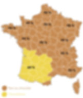 Figure 2. Carte de France des deux variantes. Les pourcentages représentent l'usage desdites variantes dans les régions.