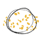 Fond transparent - Logo seul (RVB).png