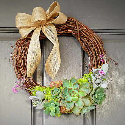 Willow and Moss Succulent Wreath, 12 in