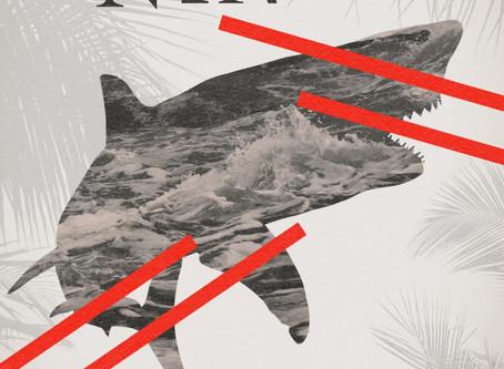 Book Review: Untamed Shore by Silvia Moreno-Garcia